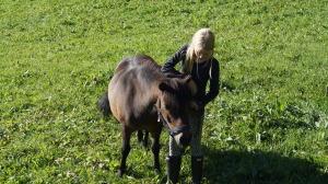 Tiril utslipp av hest sommerleir